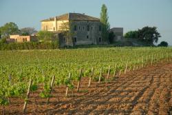 Hotel Castell de Gimenelles, Castell de Gimenelles, S/N, 43713, Sant Jaume dels Domenys