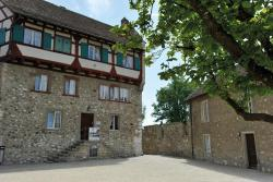 Dachsen am Rheinfall Youth Hostel, Schloss Laufen am Rheinfall, 8447, Dachsen