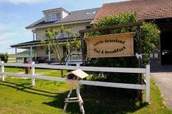 Little Graceland, Schmerlatstrasse 8, 8213, Neunkirch
