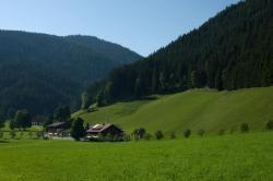 Walcherhof, Schildlehen 10, 8972, ラムサウ・アム・ダッハシュタイン