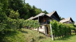 Vineyard Cottage Zajc, Stara Gora, 8333, Semič