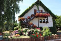 Apartment Route du Vin Centre Alsace, 36 Rue du Muscat, 67600, Orschwiller