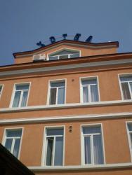 Vidin Hotel, 15 Knyaz Dondukov Str., 3700, Видин