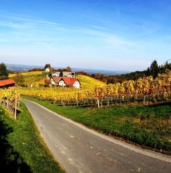 Weingut Schwarzl, Ottenberg 32, 8461, Ratsch an der Weinstraße