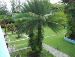 Palm Garden Hotel Barbados, Worthing, Christ Church, BB15008, Bridgetown