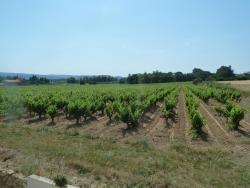 La Vigne, 500 Chemin du Crouzas, 07700, Saint-Just