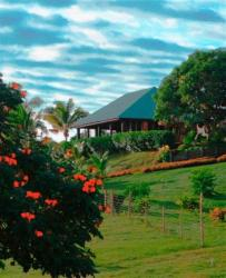 Palmlea Farms Lodge & Bures - Villas, Yalava by the Sea,, Vatutandova