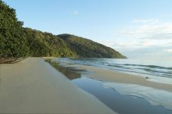 Cape Trib Beach House, 7 Rykers Road, 4873, Cape Tribulation