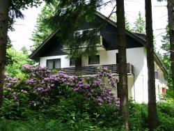 Haus Hirschmann, Birkenweg 1 A, 38644, Hahnenklee-Bockswiese