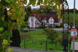 Castell Hotel & Restaurant, Hauptstraße 32, 76829, Leinsweiler