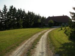 Vitamaja, Pärnumaa, Are vald, Kurena küla, 87305, Kurena