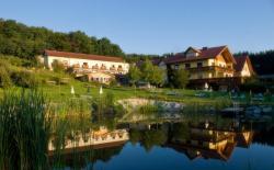 Brennerei & Wohlfühlhotel Lagler, Hotelgasse 1, 7543, 库克米恩