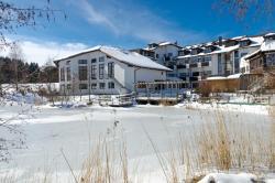 allgäu resort - HELIOS business & health Hotel, Sebastian-Kneipp-Allee 7, 87730, Grönenbach