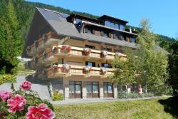 Ferienhaus Herwig Schwarzenbacher, Gatschach 65, 9762, Weissensee