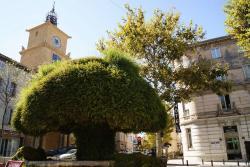 Grand Hôtel De La Poste, 1, Rue Des Frères Kennedy, 13300, Salon-de-Provence