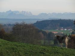 Ferienwohnung Altusried, Am Katzenbuckel 3, 87452, Altusried