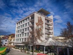Bononia Hotel, 2 Bdin Str, 3700, Vidin
