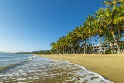 Alamanda Palm Cove by Lancemore, 1 Veivers Road, 4879, Palm Cove