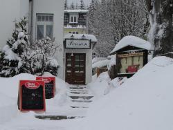 Pension Andrä, Brockenstrasse 12, 38879, Schierke
