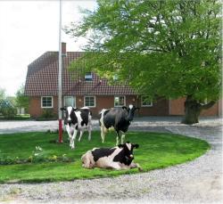 Hveddegaard Farm Holiday, Hvedde Mosevej 2, 6933, Kibæk