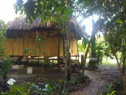Yaxche Jungle Camp, Mile 42 Hummingbird Highway, Ringtail Village, Cayo District,, Good Living Camp