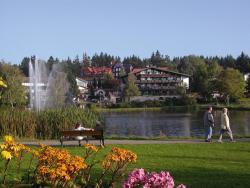 Hotels am Kranichsee, Parkstr. 4-6, 38644, Hahnenklee-Bockswiese