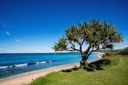 North Coast Holiday Parks Corindi Beach, Pacific Street, 2456, Corindi