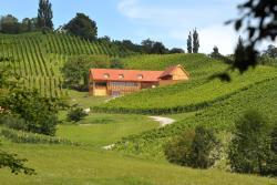 Wine & Tourisam Valdhuber Apartments, Svečina 15a, 2201, Svečina