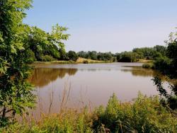 Hartleton Lake Retreat,  HR9 7SB, Linton