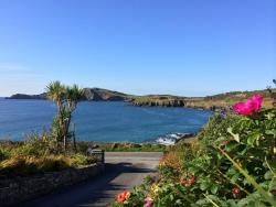 Sandycove House Bed & Breakfast, Coast Road Castletownshend,, Skibbereen