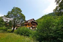 Hotel Gasthaus Hirschen, Kapellenstr. 1, 79674, Todtnau