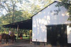 El Venado Polo School, Pila, Buenos Aires, 7116, Pila