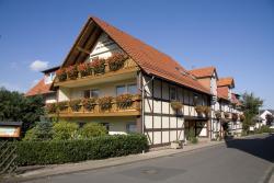 Brauner Hirsch, Laubacher Straße 39, 34346, Hannoversch Münden