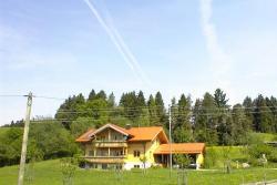 Apartment Ferienwohnung Im Allgäu 2,  87448, Hellengerst