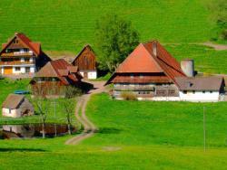 Ferienwohnung Im Schwarzwald,  78132, Tennenbronn