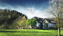 Landhotel Falken, Wittentalstr. 2, 79252, Stegen