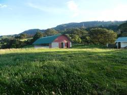 Villa Chicuagua, San Juan de Chicuá, Oreamuno, 11001, Sabanilla