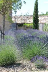 Mas Les Espalisses Gites, Route de Verfeuil, 30580, Lussan