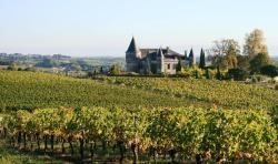 Chateau de la Grave, 1 Lieu-Dit La Grave, 33710, Bourg-sur-Gironde