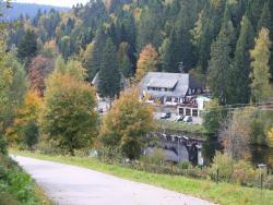 Klosterweiherhof, Am Klosterweiher 3, 79875, Dachsberg im Schwarzwald