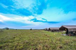 Kananga Special Tented Camp, Serengeti National Park,, Banagi
