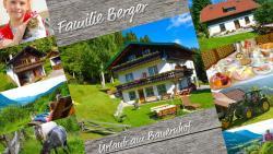 Gästehaus Berger, Lötschenbergweg 25, 9521, Treffen