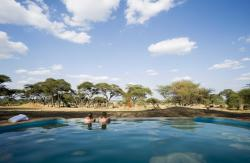 Sanctuary Swala, Tarangire National Park,, Madege