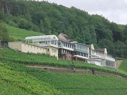 Panorama Hotel und Restaurant Schloßberg, Schloßberg 2, 63755, Alzenau in Unterfranken