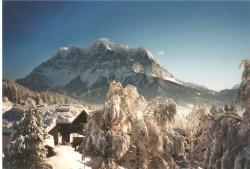 Alpenflora, Lussgasse 18, 6631, Lermoos
