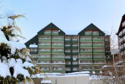 Résidence les Balcons du Soleil, station de Peyragudes Balestas, 65240, Germ