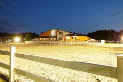 Master Horse Club - Svojetice, U Šajby 194, 251 62, Svojetice