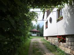 Guesthouse Prachovské skály, Zámostí - Blata 47, 506 01, Blata