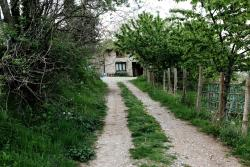 Albergue Casa Fumenal, Casa Fumenal , 22451, Padarniu