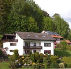 Ferienwohnung Patry, Sommerberg 6, 64743, Finkenbach